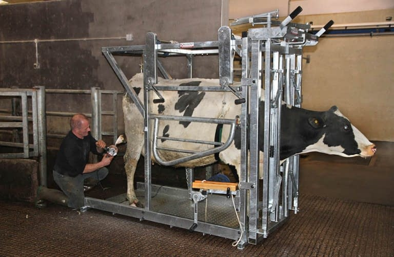 Nugent universal hoof tech 5 Wexford Carlow and Wicklow