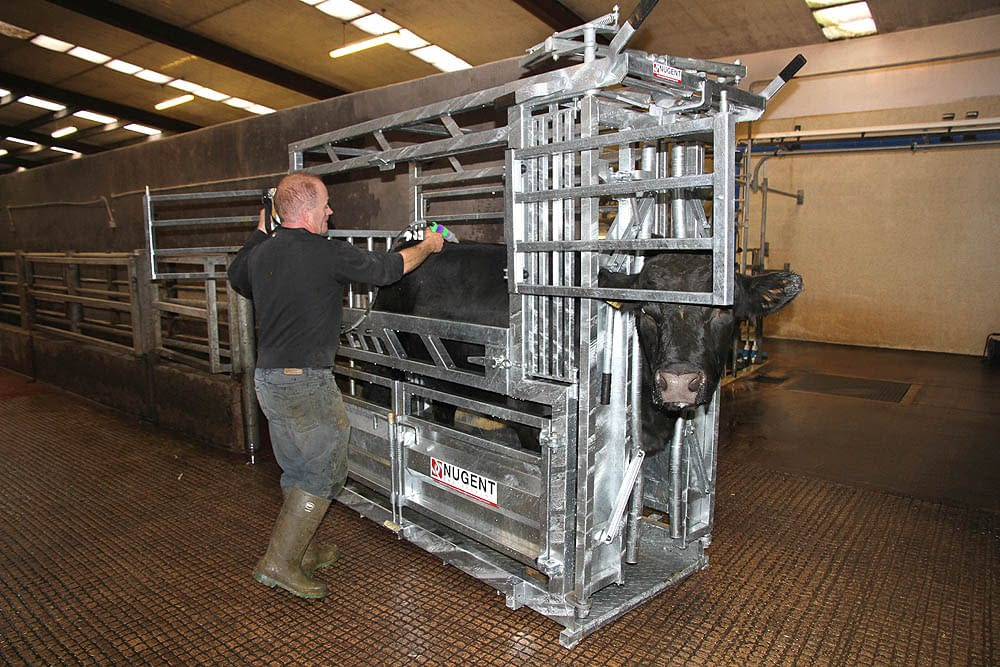 universal cattle tech 4 Wexford Carlow and Wicklow